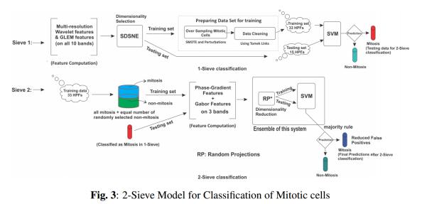 Overall 2-SimDoM Scheme
