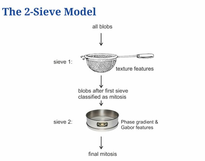 2-Sieve Model
